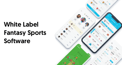 White Label Fantasy Sports Software – A Complete Guide for Startups and Entrepreneurs Across the Globe